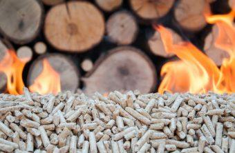 Le granulé de bois, combustible propre et économique