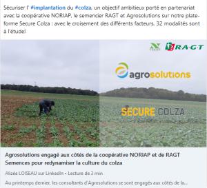 Secure colza - article linkedin - RAGT Semences s'associe à agrosolutions et au GROUPE NORIAP pour redynamiser la culture du colza. Découvrez ci-dessous l'article de Alizée LOISEAU