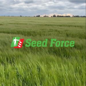 seed-force-ragt-14-december 2020