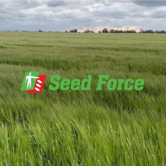 seed-force-ragt-14-december 2020
